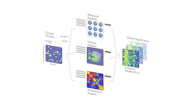 Schema che illustra il funzionamento della Molecular Evidence Platform (MEP) di Jungla