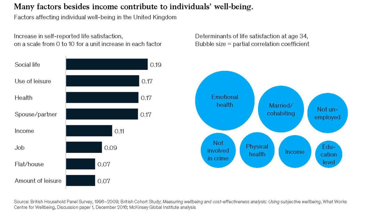 i fattori che contribuiscono a determinare il benessere