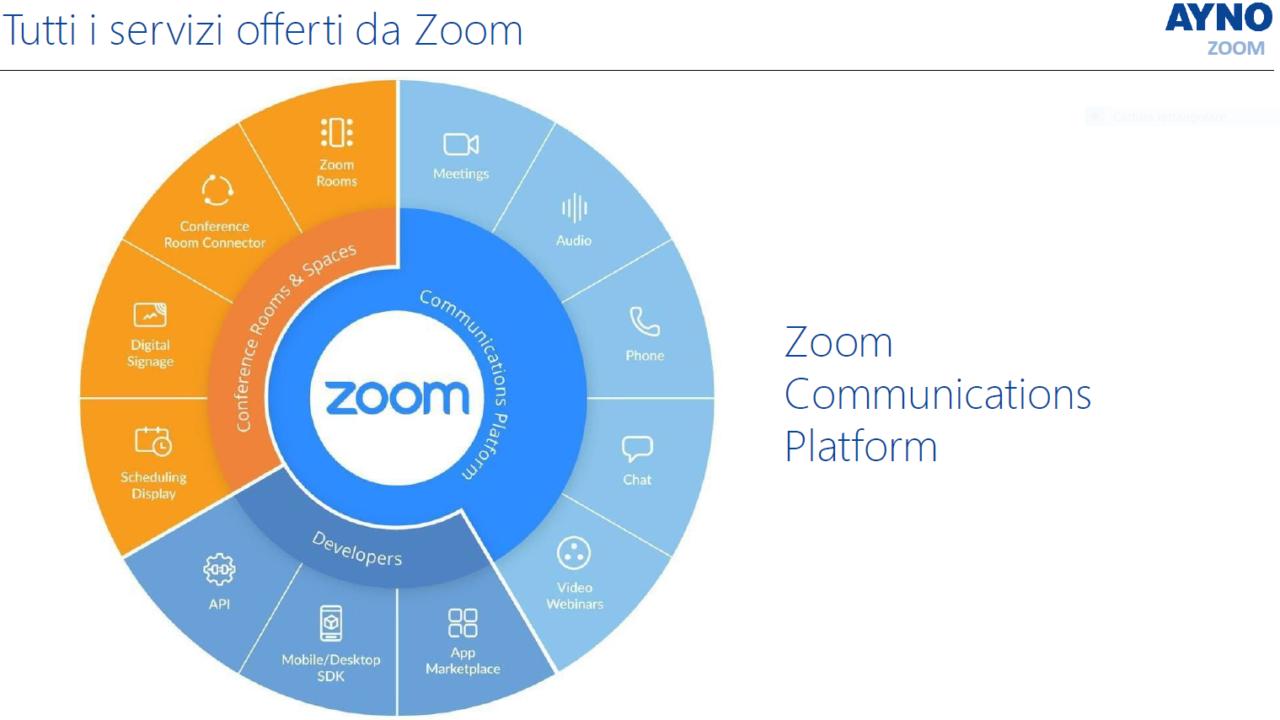Zoom_platform